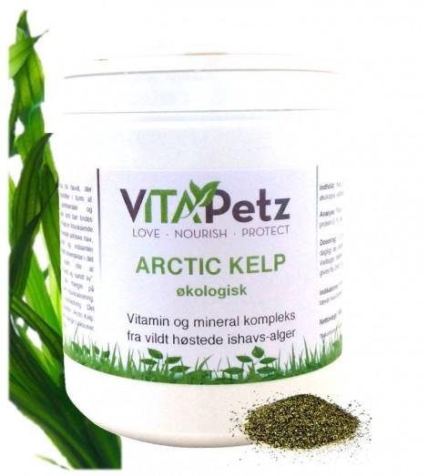 Arctic Kelp, økologisk